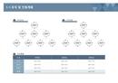 사업계획서 조직 및 인원계획(조직도 분류)