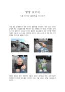 서울 디자인 올림픽 탐방보고서