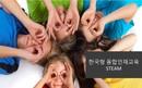 한국형 융합인재교육 STEAM 보고서