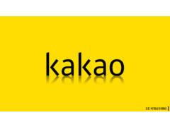 카카오 평판관리 솔루션 기획 보고서