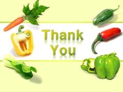 채소 색색의 야채들(파워포인트>프리미엄 PPT>자연/환경) - 예스폼 쇼핑몰