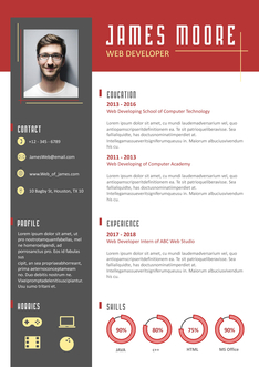 영문 이력서 (Web developer(IT/programmer) resume)
