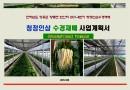 청정인삼 수경재배 사업계획서