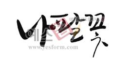 섬네일: 나팔꽃 - 손글씨 > 캘리그래피 > 동/식물