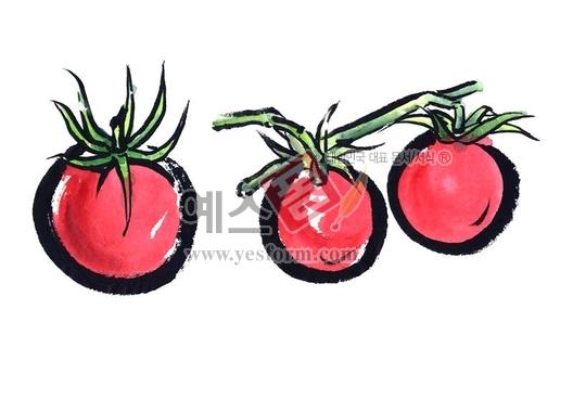 미리보기: 방울토마토2 - 손글씨 > 캘리그래피 > 동/식물