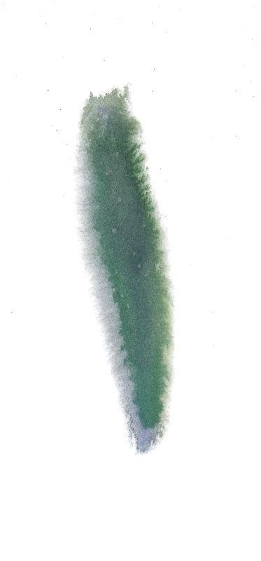 칼라번짐9