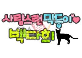 섬네일: 사랑스런 막둥이 백다희 (고양이, 반려동물, 애완동물, 이름표) - 손글씨 > POP > 기타