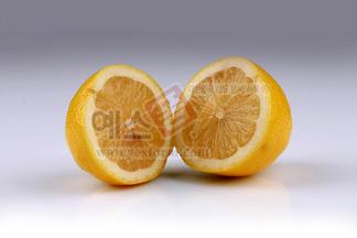 오랜지,오렌지