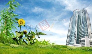 빌딩,건물,건축물,해바라기,초록,대나무