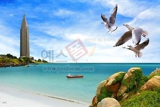 자연,풍경,건물,건축물,빌딩,갈메기,갈매기,새,버드,어선