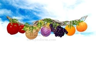 과일,포도,생태,하늘,구름