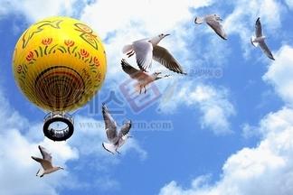 애드벌륜,에드벌륜,하늘,구름,갈매기,새,버드