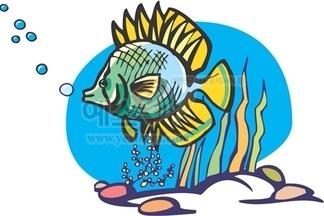 물고기,해산물