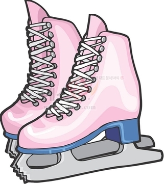스케이트화,신발,겨울스포츠
