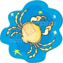해양게,crab,집게발,갑각류,바다동물