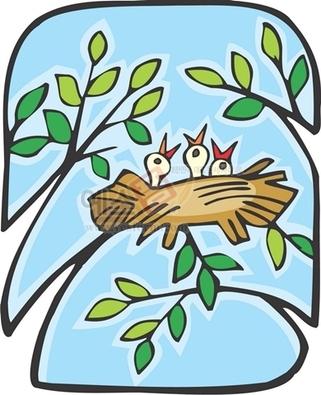 나뭇잎,나뭇가지,둥지,새둥지,새끼,새