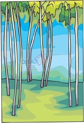 나무,수목원,산림욕