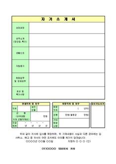 경력사원 입사지원서 - 섬네일 3page