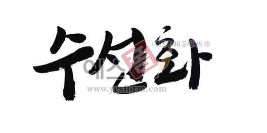 미리보기: 수선화 - 손글씨 > 캘리그라피 > 동/식물