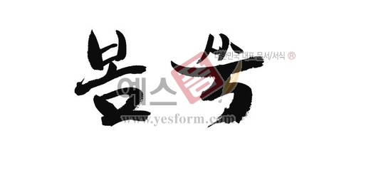 미리보기: 봄쑥 - 손글씨 > 캘리그라피 > 동/식물