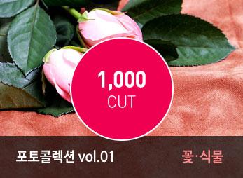 포토 콜렉션 Vol.01 (꽃/식물)