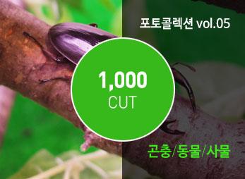포토 콜렉션 Vol.05 (곤충/동물/사물)